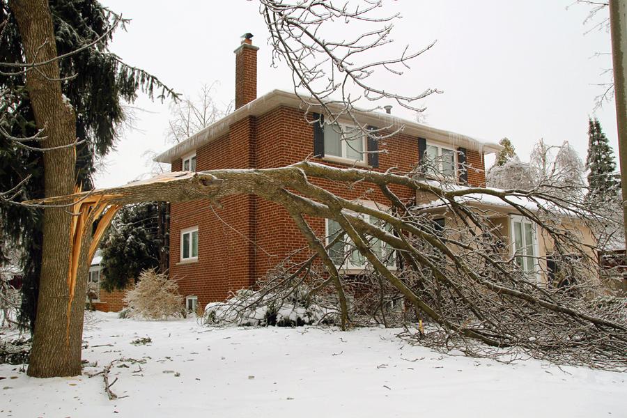 Ice Storm Ontario 2013